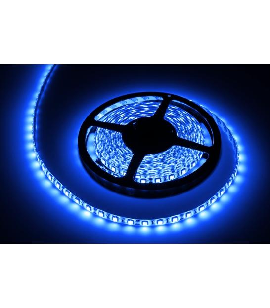 Sznur diodowy 5m, wodoodporny, niebieski (300x5050SMD)- białe PCB